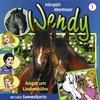 Wendy Hörspiel CD 001   1 Angst um Lindenhöhe Kiddinx NEU & OVP