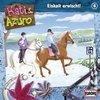 Kati & Azuro Hörspiel CD 006 6 Eiskalt erwischt! NEU & OVP