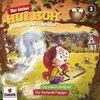 Der kleine Hui Buh Hörspiel CD 003 3 Die wilde Koboldjagd + Der fluchende Papagei  NEU & OVP